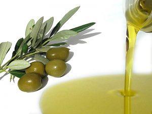 Vendita Olio Extravergine Biologico - La Qualità delle Olive Migliori.